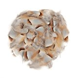 Wapsi Chukar Feathers Loose Natural